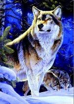 Wolf on gaurd (500 Piece)