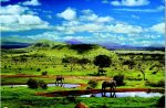 Tsavo National Park, Kenya (500 Piece)